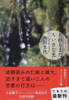 装丁写真 「それもまたちいさな光」  著書:角田光代